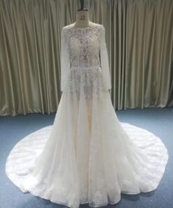 JB1202-1 long sleeve sheer wedding gown from darius cordell