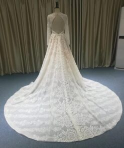 JB1202-2 backless long sleeve bridal gown from darius cordell