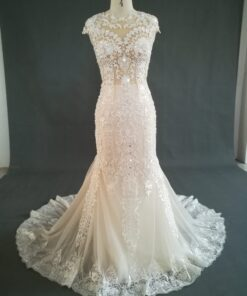 JB1235 Cap sleeve lace wedding gown with illusion bodice from darius cordell